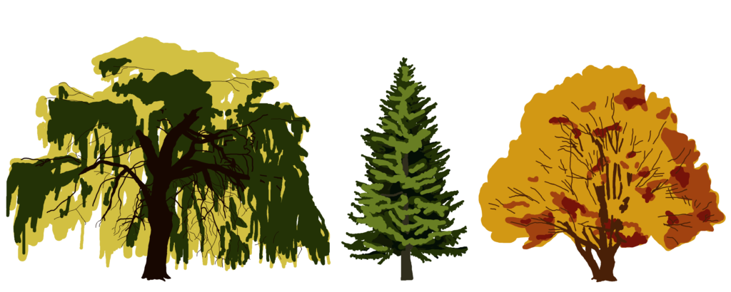 Kontakt Bäume